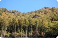 山は紅葉 秋満載