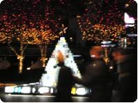 六本木ヒルズのクリスマスイルミネーションと猪八戒の中華